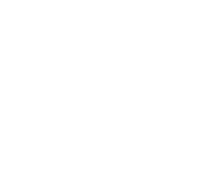 BizSMART光電話